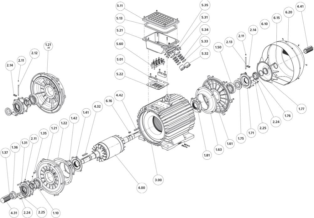 Конструкция, основные узлы и детали двигателей габарита 315 мм и степенью защиты IP54, IP55.